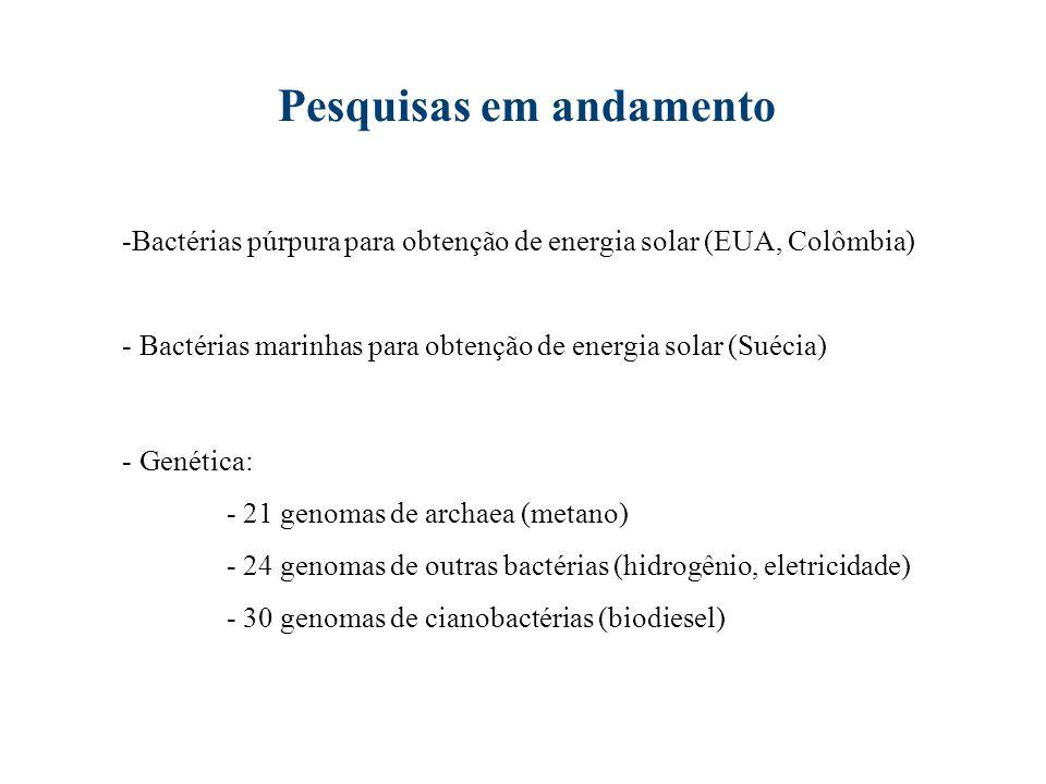 Fonte: Prado et al., 2006.