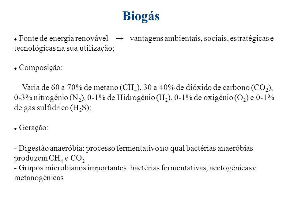 Biofotólise da água H2OH2O Luz O 2 + H 2 Fotodecomposição de compostos orgânicos C 6 H 12 O 6 + H2O Luz 12H 2 + 6CO 2 Fermentação de compostos orgânicos C 12 H 22 O 11 + 5H 2 O4CH 3 COOH + 4CO 2 + 8H 2