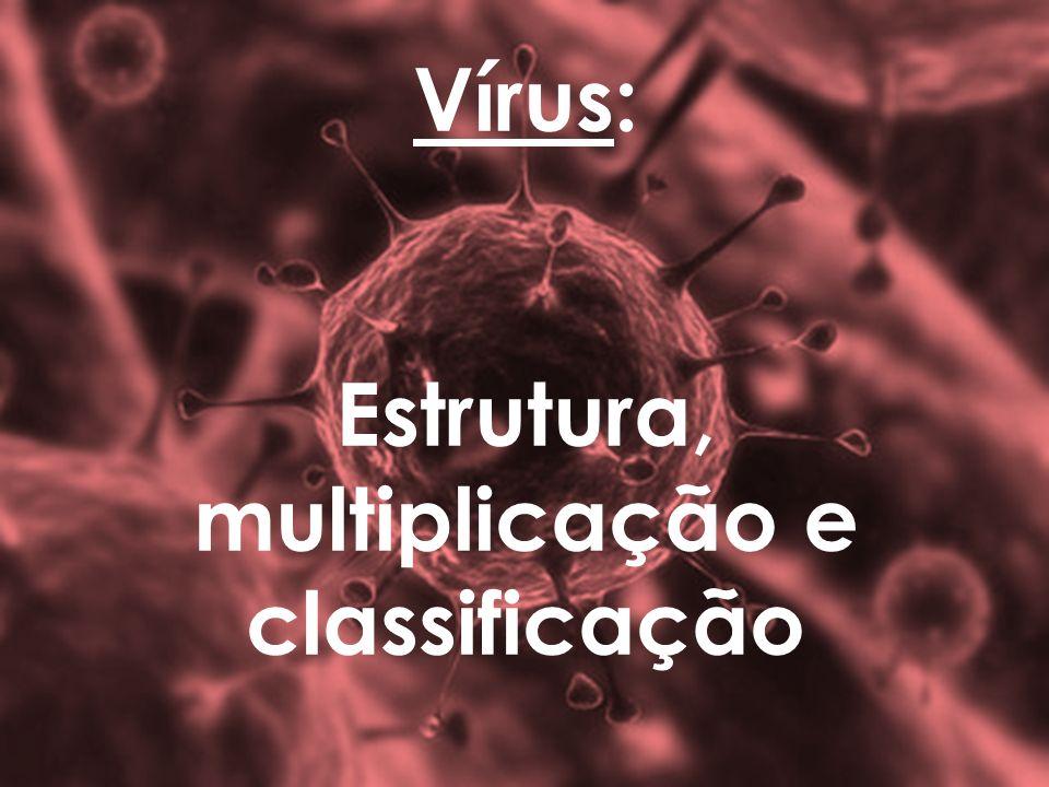Vírus: Estrutura, multiplicação e classificação