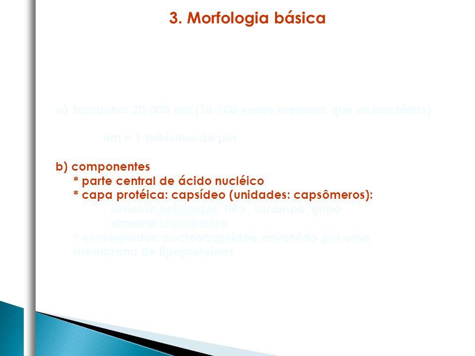 a)tamanho: 20-300 nm (10-100 vezes menores que as bactérias) nm = 1 milésimo de μm b) componentes * parte central de ácido nucléico * capa protéica: c