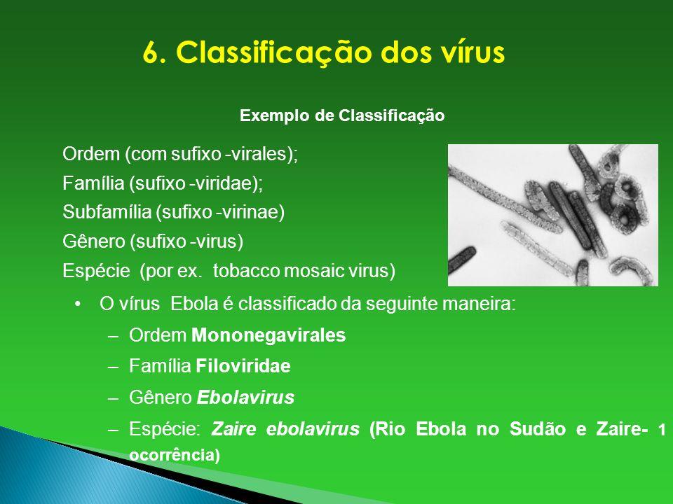 Ordem (com sufixo -virales); Família (sufixo -viridae); Subfamília (sufixo -virinae) Gênero (sufixo -virus) Espécie (por ex. tobacco mosaic virus) Exe