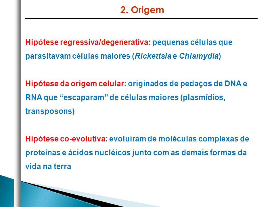 Hipótese regressiva/degenerativa: pequenas células que parasitavam células maiores (Rickettsia e Chlamydia) Hipótese da origem celular: originados de