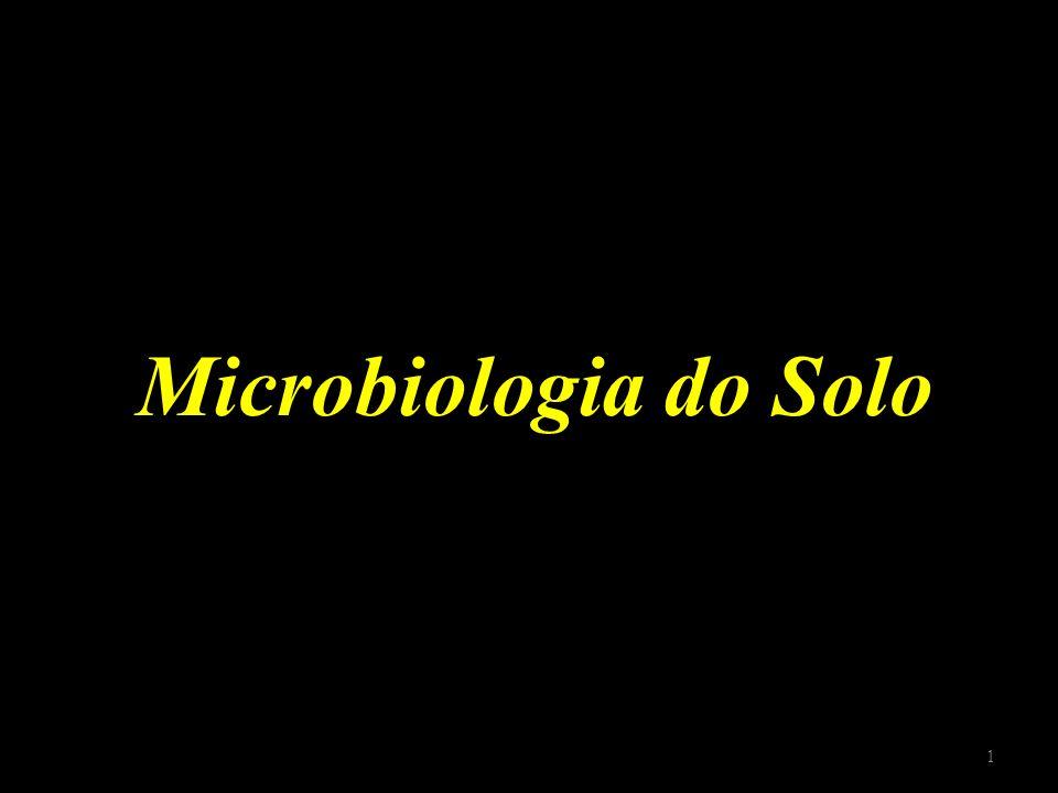 Microbiologia do Solo 1