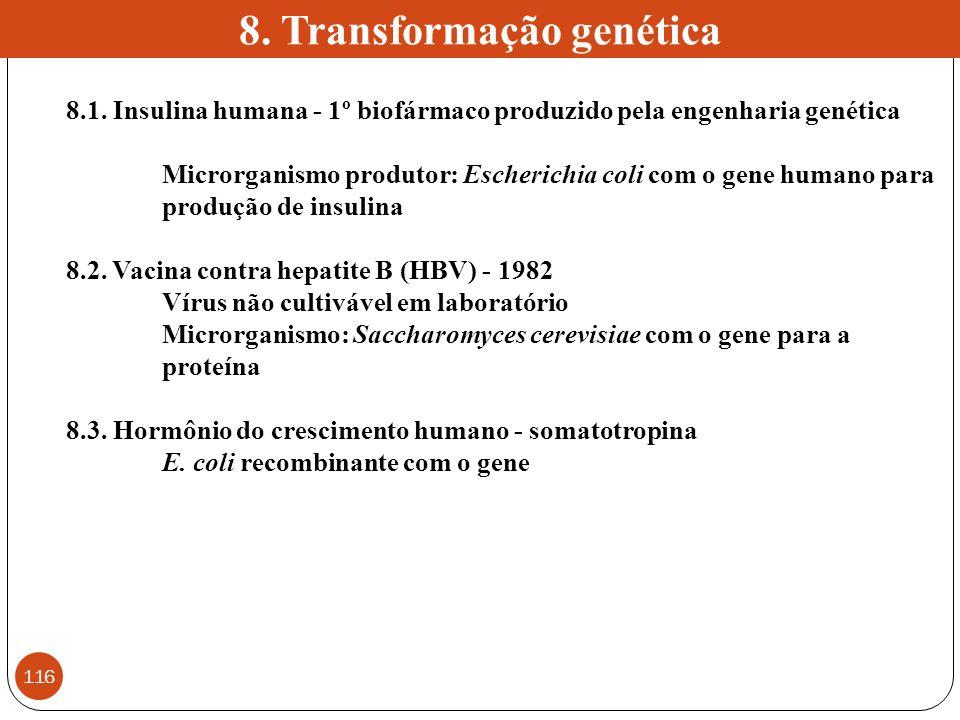 8.1. Insulina humana - 1º biofármaco produzido pela engenharia genética Microrganismo produtor: Escherichia coli com o gene humano para produção de in