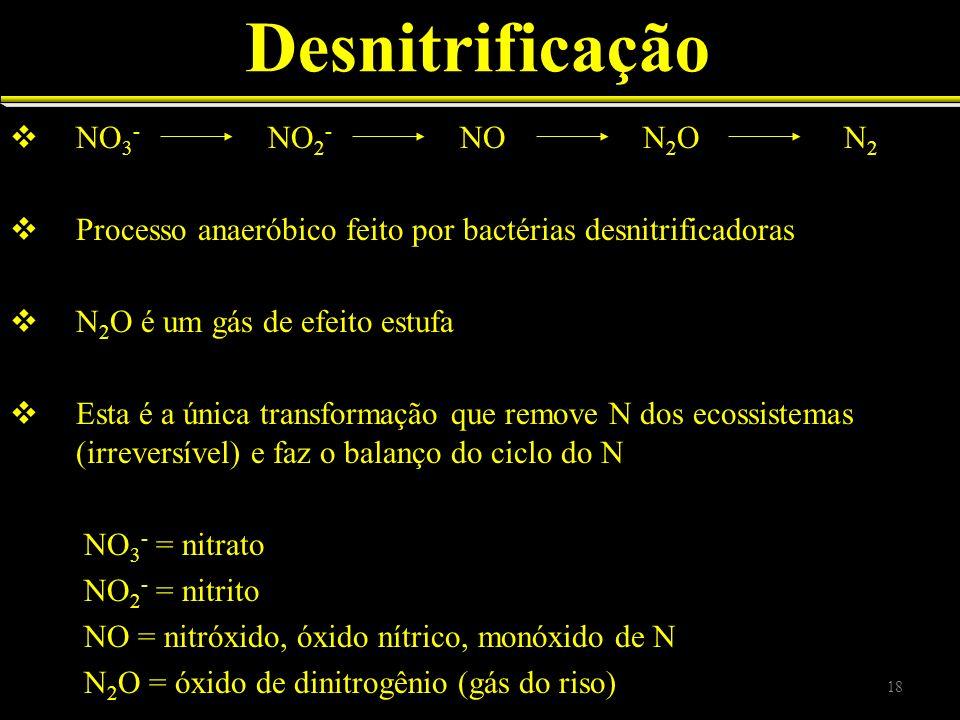 Desnitrificação NO 3 - NO 2 - NO N 2 O N 2 Processo anaeróbico feito por bactérias desnitrificadoras N 2 O é um gás de efeito estufa Esta é a única tr