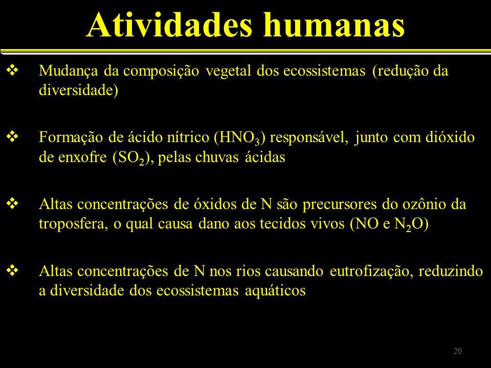 Atividades humanas Mudança da composição vegetal dos ecossistemas (redução da diversidade) Formação de ácido nítrico (HNO 3 ) responsável, junto com d