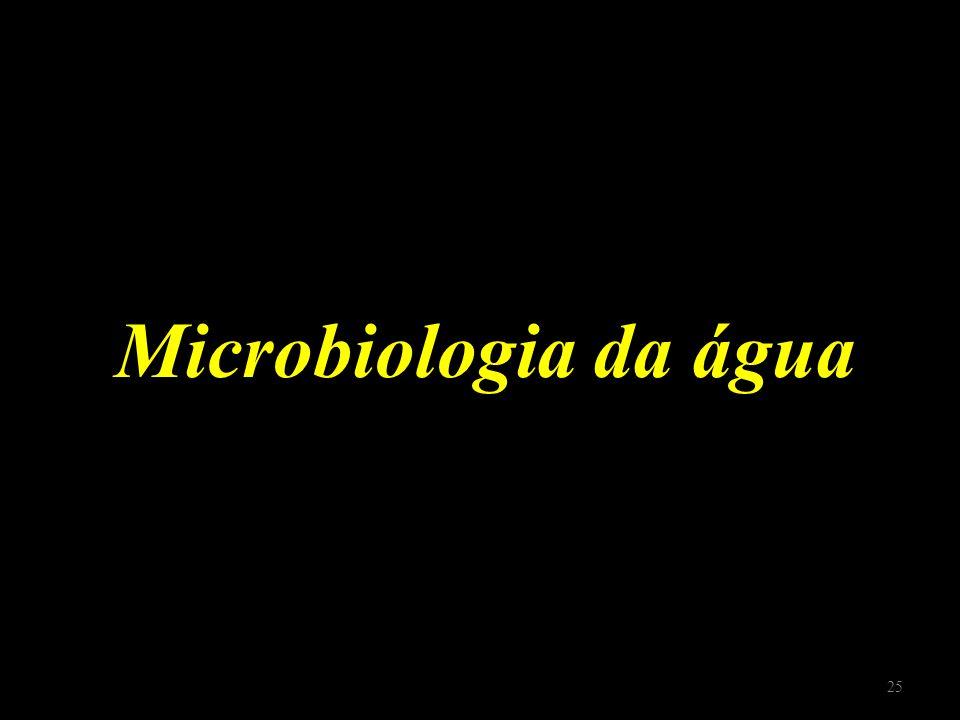 Microbiologia da água 25