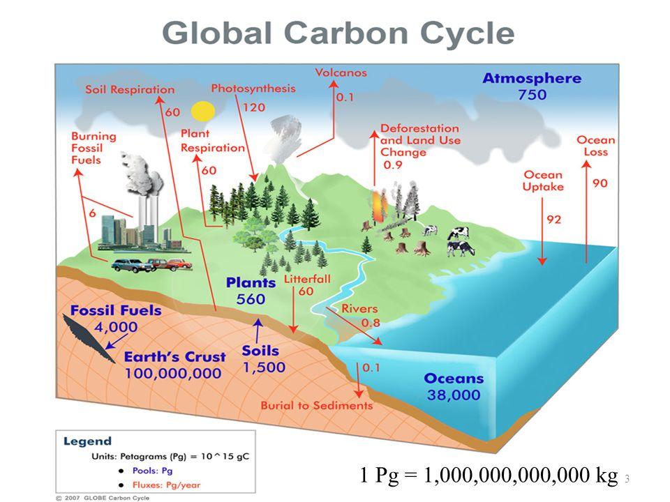 1 Pg = 1,000,000,000,000 kg 3