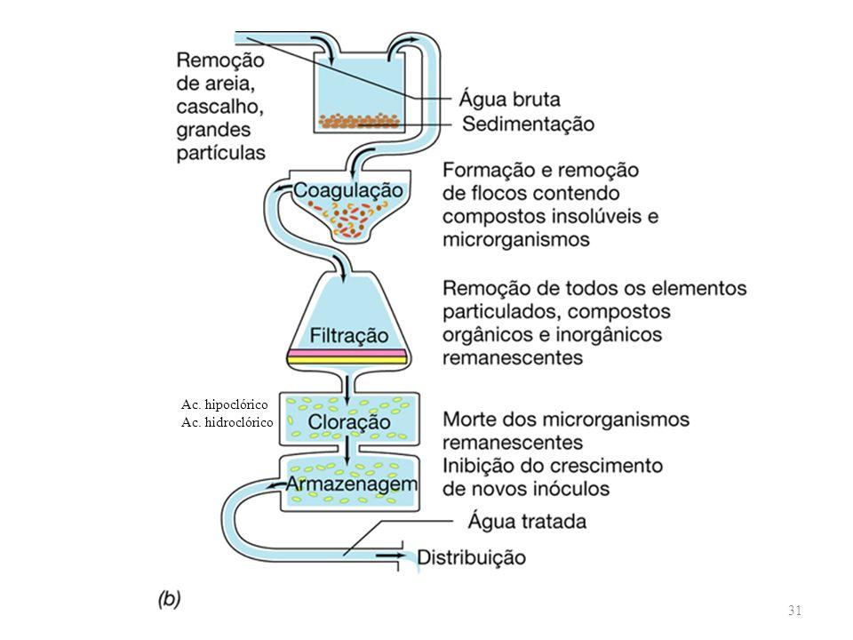 Ac. hipoclórico Ac. hidroclórico 31