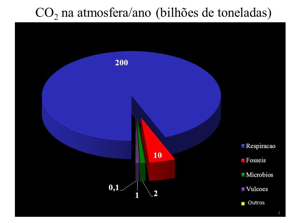 CO 2 na atmosfera/ano (bilhões de toneladas) Outros 4