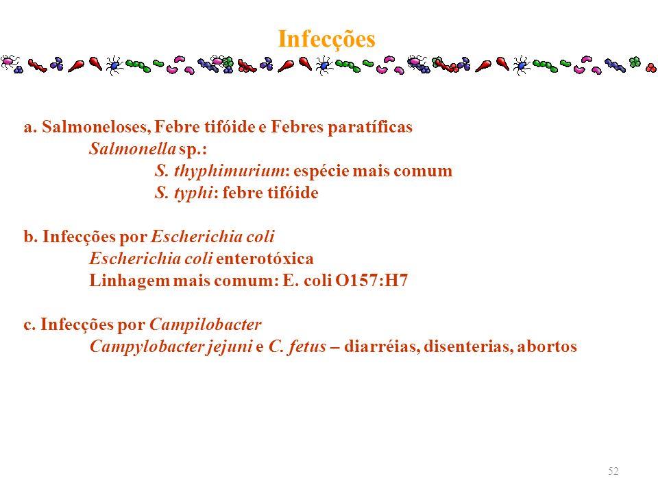 Infecções a. Salmoneloses, Febre tifóide e Febres paratíficas Salmonella sp.: S. thyphimurium: espécie mais comum S. typhi: febre tifóide b. Infecções