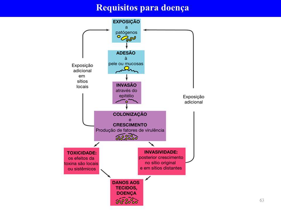 Requisitos para doença 63
