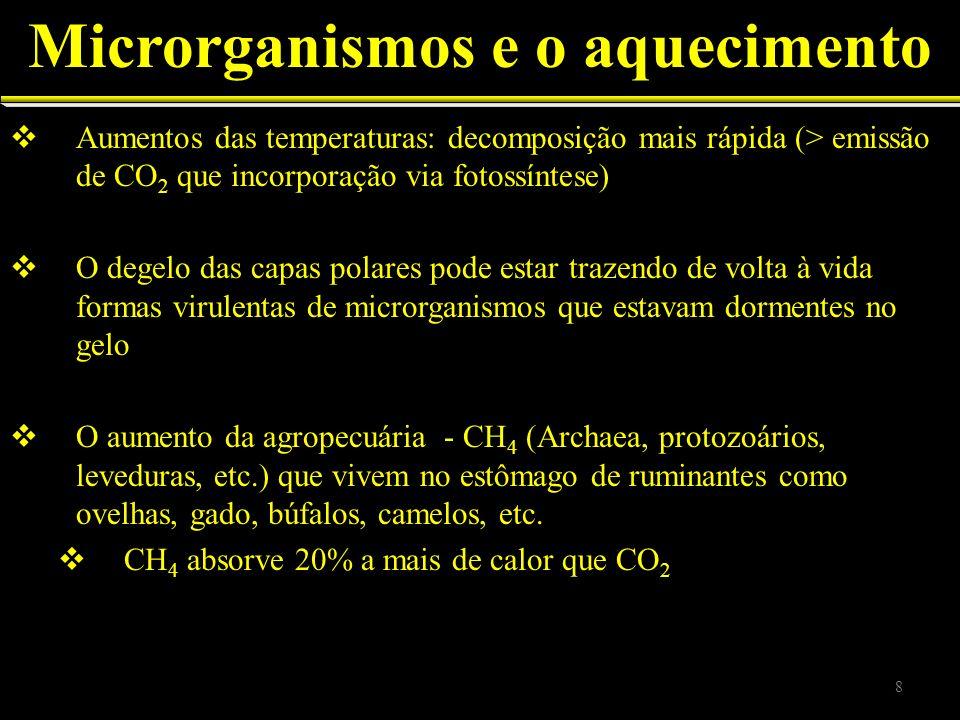 Aumentos das temperaturas: decomposição mais rápida (> emissão de CO 2 que incorporação via fotossíntese) O degelo das capas polares pode estar trazen