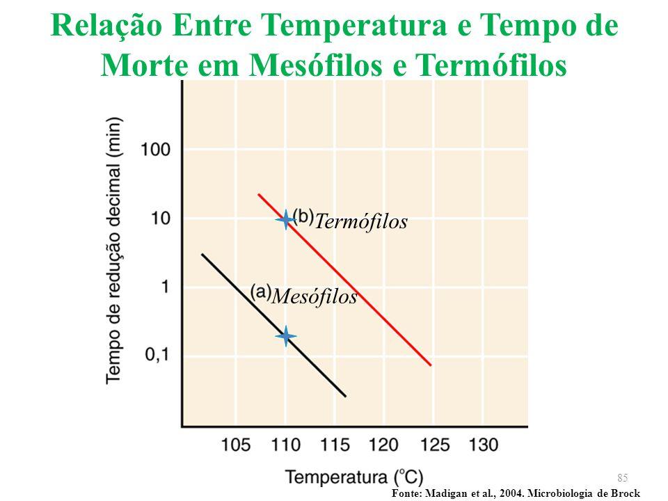 Fonte: Madigan et al., 2004. Microbiologia de Brock Relação Entre Temperatura e Tempo de Morte em Mesófilos e Termófilos Mesófilos Termófilos 85