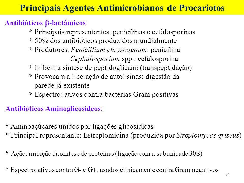 Antibióticos -lactâmicos: * Principais representantes: penicilinas e cefalosporinas * 50% dos antibióticos produzidos mundialmente * Produtores: Penic