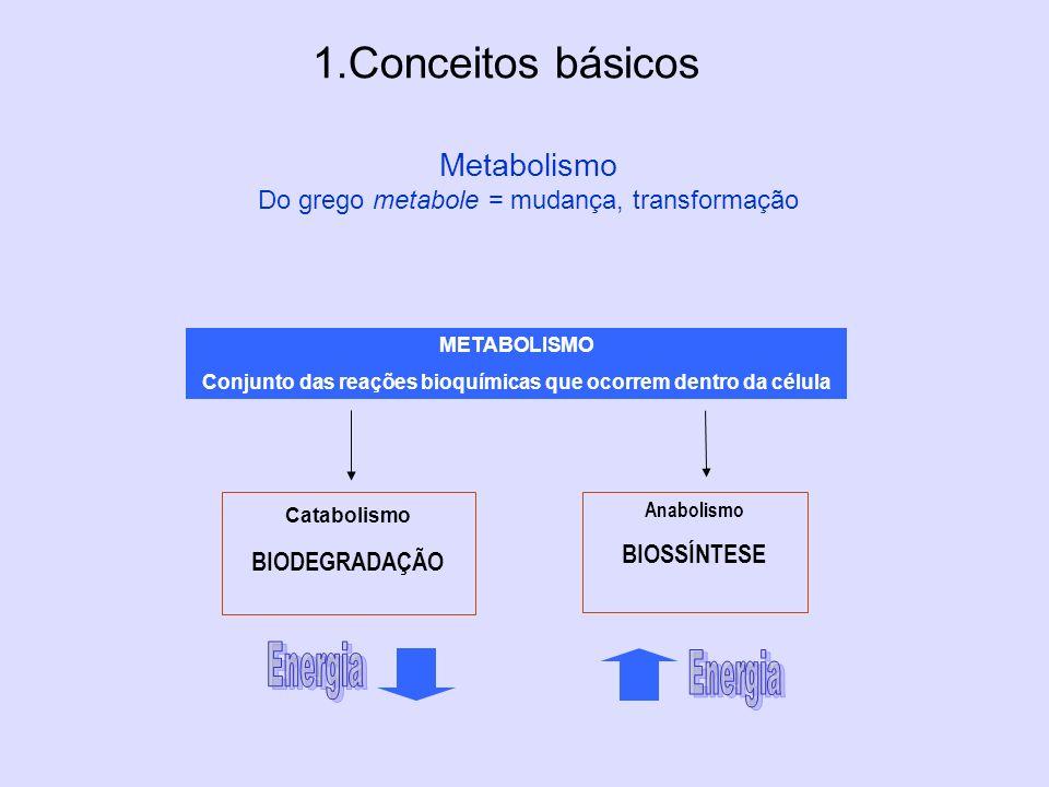 Metabolismo Do grego metabole = mudança, transformação 1.Conceitos básicos METABOLISMO Conjunto das reações bioquímicas que ocorrem dentro da célula C