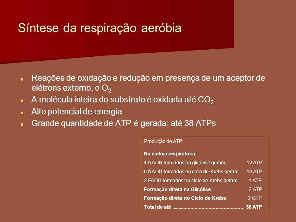 Síntese da respiração aeróbia Reações de oxidação e redução em presença de um aceptor de elétrons externo, o O 2 A molécula inteira do substrato é oxi