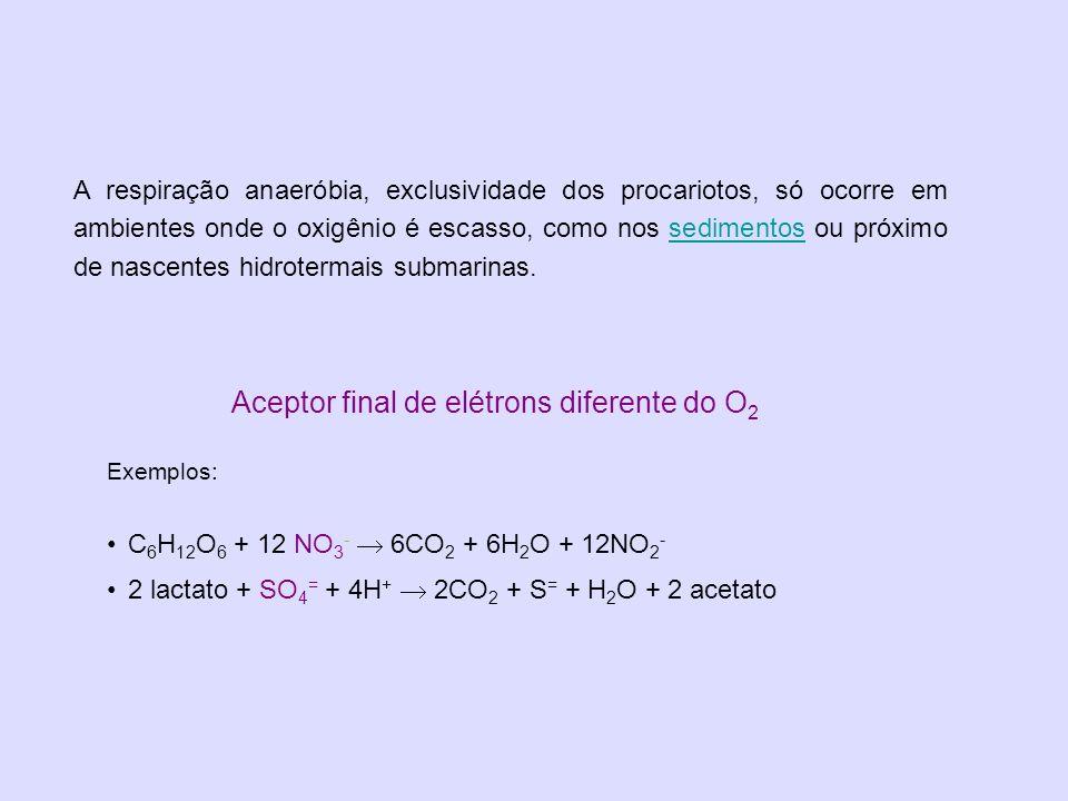 Aceptor final de elétrons diferente do O 2 Exemplos: C 6 H 12 O 6 + 12 NO 3 - 6CO 2 + 6H 2 O + 12NO 2 - 2 lactato + SO 4 = + 4H + 2CO 2 + S = + H 2 O