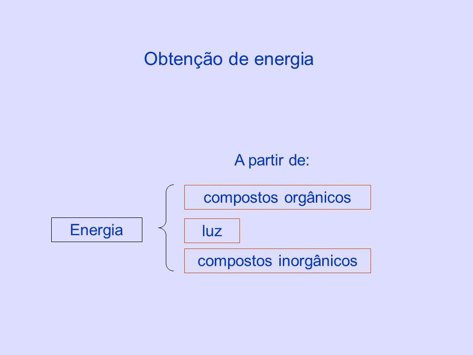 Obtenção de energia Energia compostos orgânicos compostos inorgânicos luz A partir de: