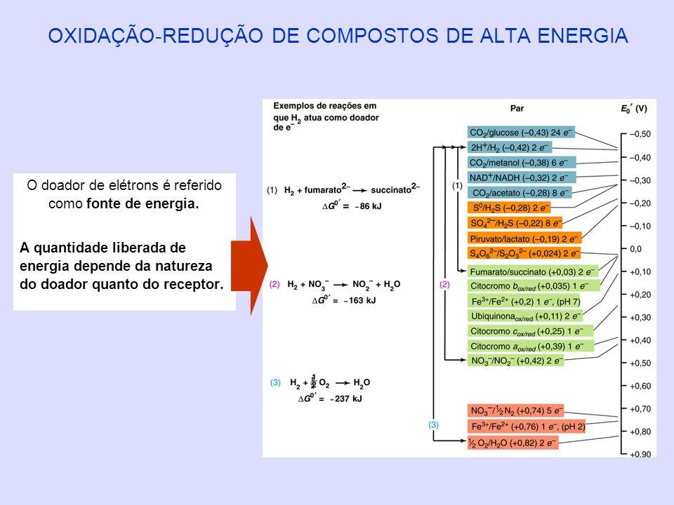 OXIDAÇÃO-REDUÇÃO DE COMPOSTOS DE ALTA ENERGIA O doador de elétrons é referido como fonte de energia. A quantidade liberada de energia depende da natur
