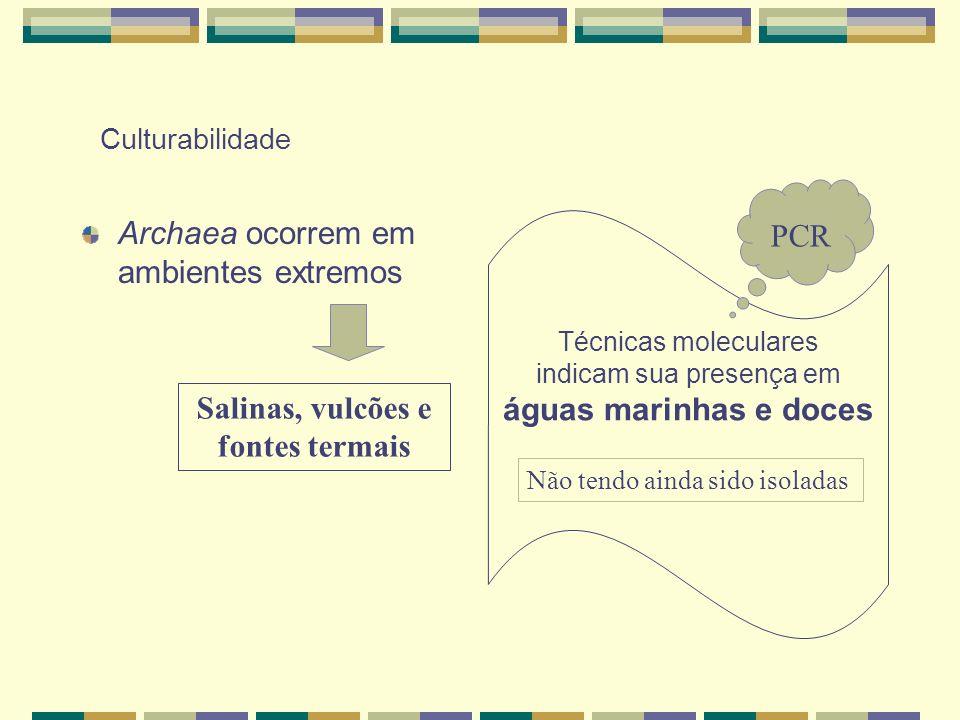 Culturabilidade Archaea ocorrem em ambientes extremos Salinas, vulcões e fontes termais Técnicas moleculares indicam sua presença em águas marinhas e
