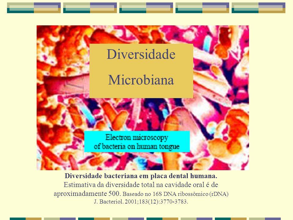 Diversidade Microbiana Diversidade bacteriana em placa dental humana. Estimativa da diversidade total na cavidade oral é de aproximadamente 500. Basea