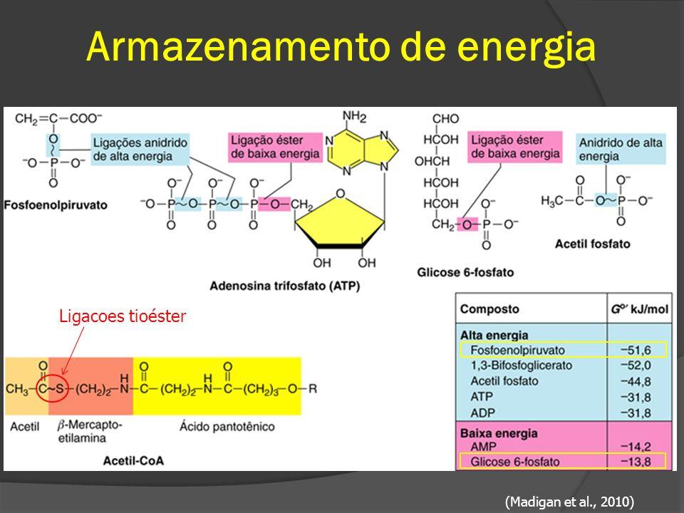 Armazenamento de energia (Madigan et al., 2010) Ligacoes tioéster