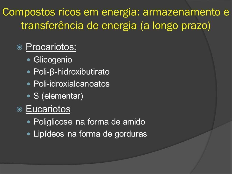 Compostos ricos em energia: armazenamento e transferência de energia (a longo prazo) Procariotos: Glicogenio Poli-β-hidroxibutirato Poli-idroxialcanoa
