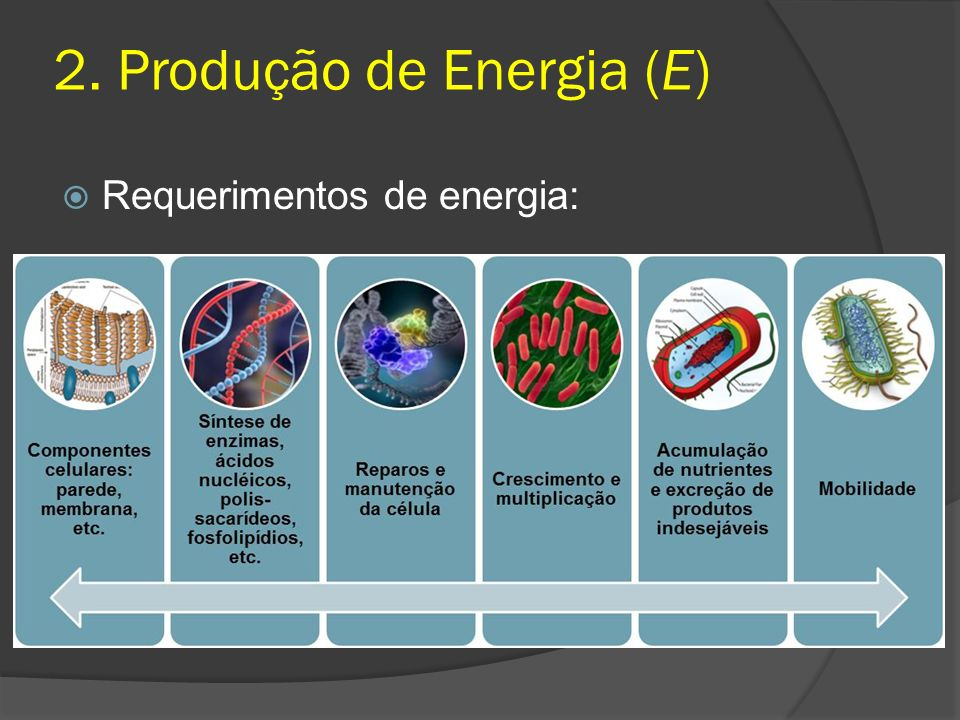 Requerimentos de energia: 2. Produção de Energia (E)