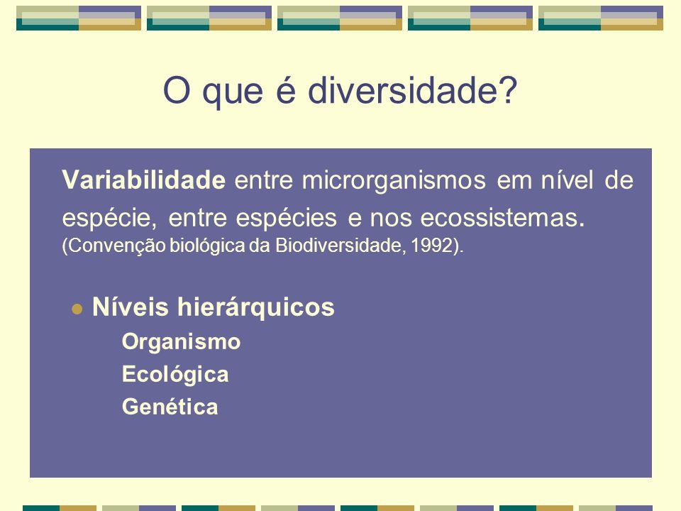 Elementos da diversidade Diversidade Diversidade Diversidade Ecológica Genética Organismal Biomas Bio-regiões Paisagem Ecossistema Habitat Nichos Populações Indivíduos Cromossomos Genes Nucleotídeos Reino Filo Família Gênero Espécie População Individuo Heywood & Baste, 1995 Hierarquias
