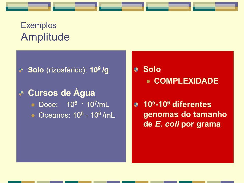 Exemplos Amplitude Solo (rizosférico): 10 9 /g Cursos de Água Doce: 10 6 - 10 7 /mL Oceanos: 10 5 - 10 6 /mL Solo COMPLEXIDADE 10 5 -10 6 diferentes g