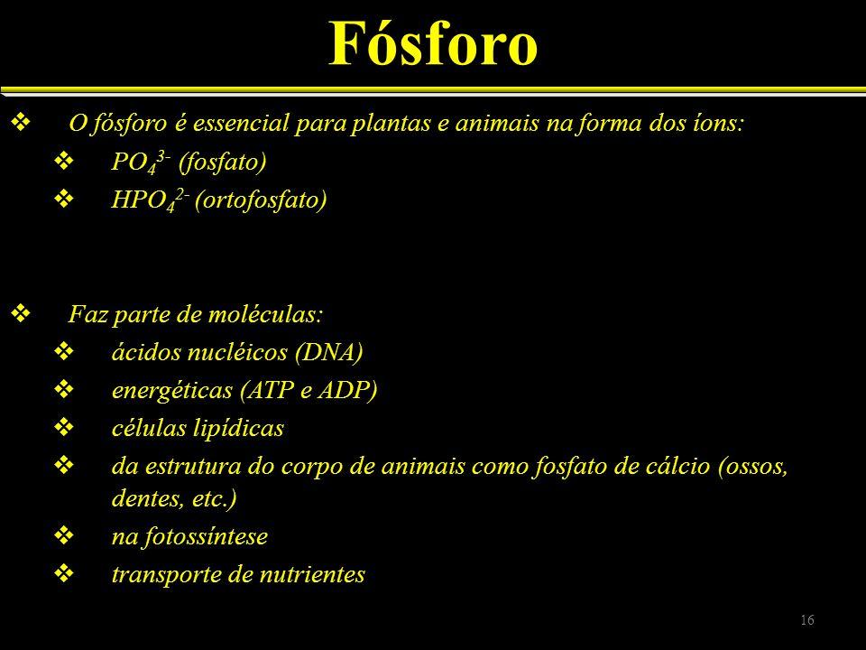 Fósforo O fósforo é essencial para plantas e animais na forma dos íons: PO 4 3- (fosfato) HPO 4 2- (ortofosfato) Faz parte de moléculas: ácidos nucléi