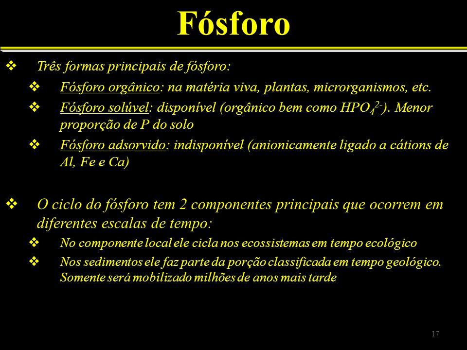 Fósforo Três formas principais de fósforo: Fósforo orgânico: na matéria viva, plantas, microrganismos, etc. Fósforo solúvel: disponível (orgânico bem