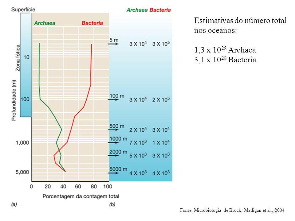 Fonte: Microbiologia de Brock; Madigan et al., 2004 Estimativas do número total nos oceanos: 1,3 x 10 28 Archaea 3,1 x 10 28 Bacteria 22