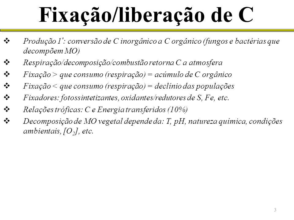Thiobacillus thioxidans e Thiobacillus ferroxidans ácidosoxidação do minérioprecipitação 10.