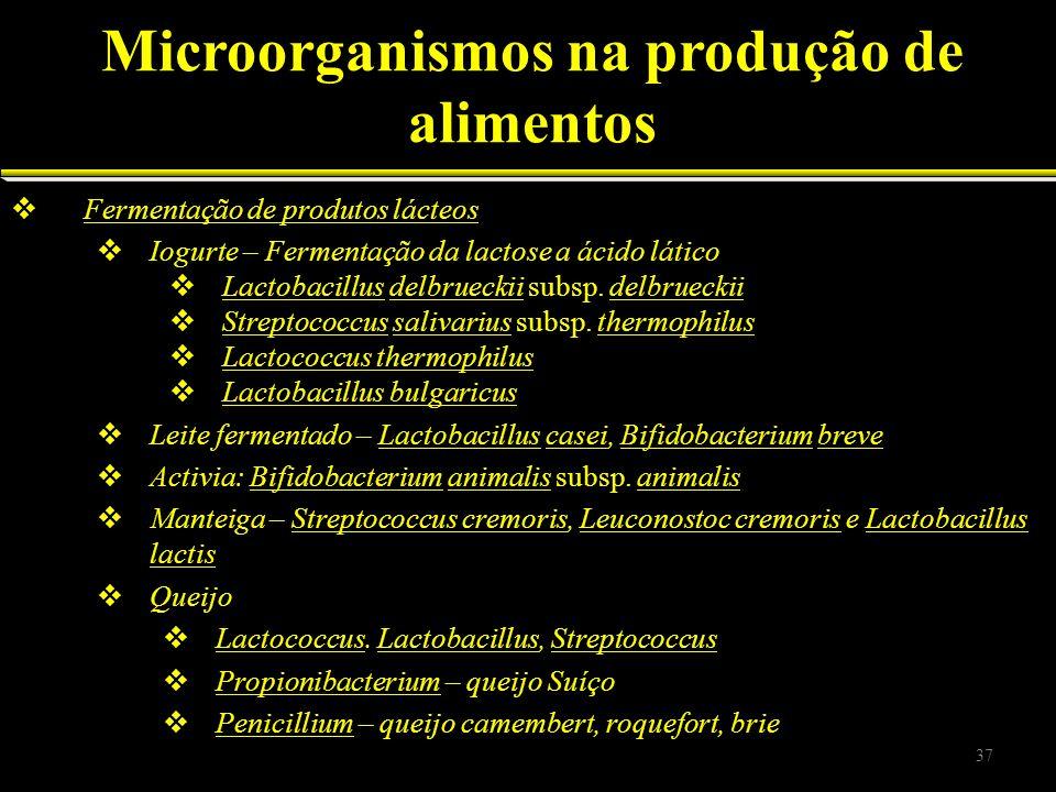 Fermentação de produtos lácteos Iogurte – Fermentação da lactose a ácido lático Lactobacillus delbrueckii subsp. delbrueckii Streptococcus salivarius