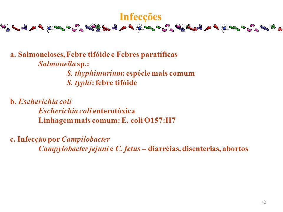Infecções a. Salmoneloses, Febre tifóide e Febres paratíficas Salmonella sp.: S. thyphimurium: espécie mais comum S. typhi: febre tifóide b. Escherich