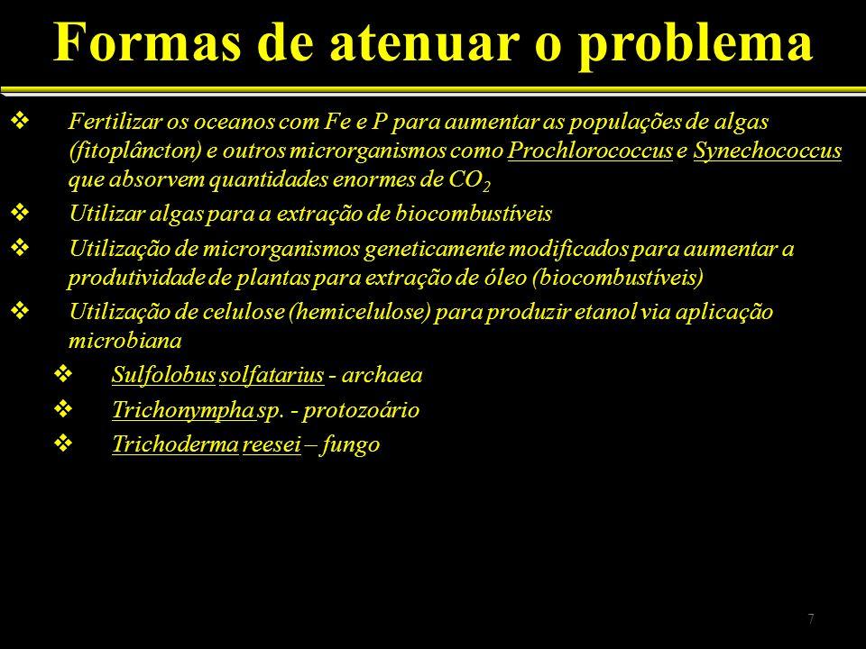 2.1.Principais organismos Fungos = leveduras e bolores Actinomycetes = Streptomyces 2.2.