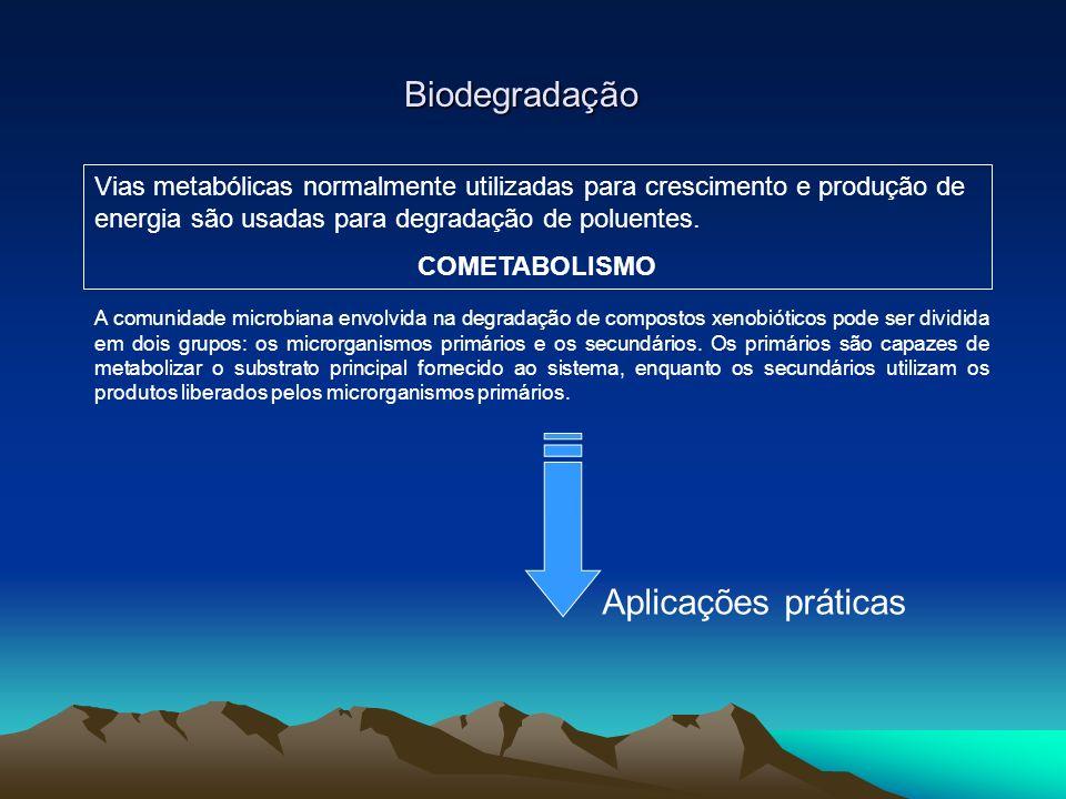 Biodegradação Vias metabólicas normalmente utilizadas para crescimento e produção de energia são usadas para degradação de poluentes. COMETABOLISMO Ap