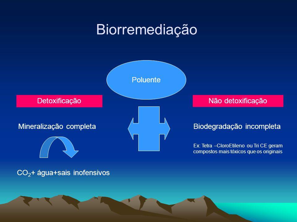 Biorremediação Poluente Mineralização completa CO 2 + água+sais inofensivos Biodegradação incompleta Ex: Tetra –CloroEtileno ou Tri CE geram compostos