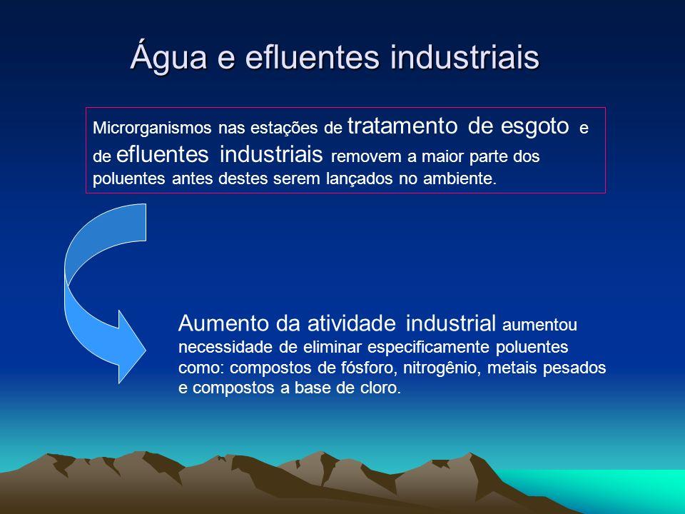 Água e efluentes industriais Microrganismos nas estações de tratamento de esgoto e de efluentes industriais removem a maior parte dos poluentes antes
