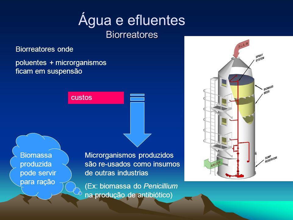 Biorreatores Água e efluentes Biorreatores Biorreatores onde poluentes + microrganismos ficam em suspensão custos Microrganismos produzidos são re-usa
