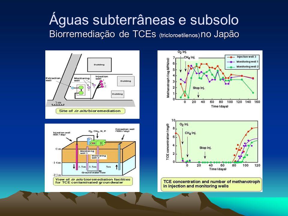 Biorremediação de TCEs (tricloroetilenos) no Japão Águas subterrâneas e subsolo Biorremediação de TCEs (tricloroetilenos) no Japão