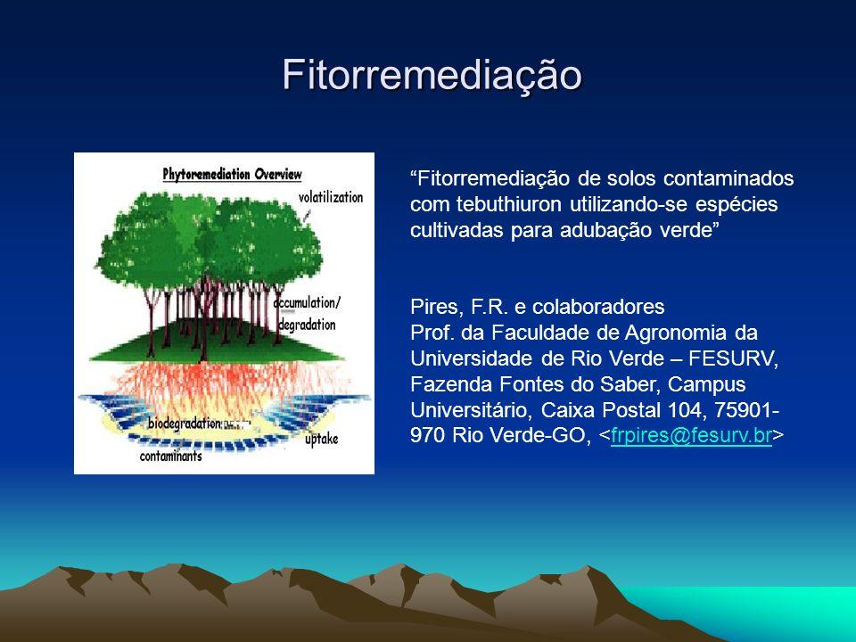 Fitorremediação Fitorremediação de solos contaminados com tebuthiuron utilizando-se espécies cultivadas para adubação verde Pires, F.R. e colaboradore