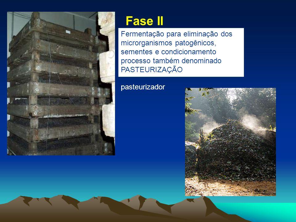 Fermentação para eliminação dos microrganismos patogênicos, sementes e condicionamento processo também denominado PASTEURIZAÇÃO pasteurizador Fase II
