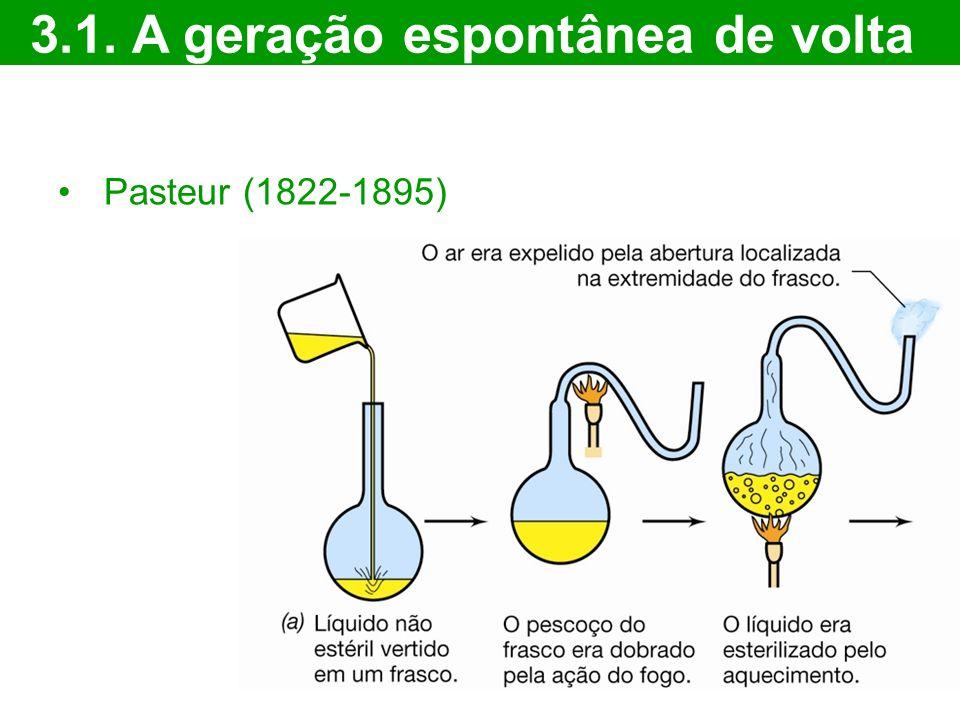 Pasteur (1822-1895) 3.1. A geração espontânea de volta