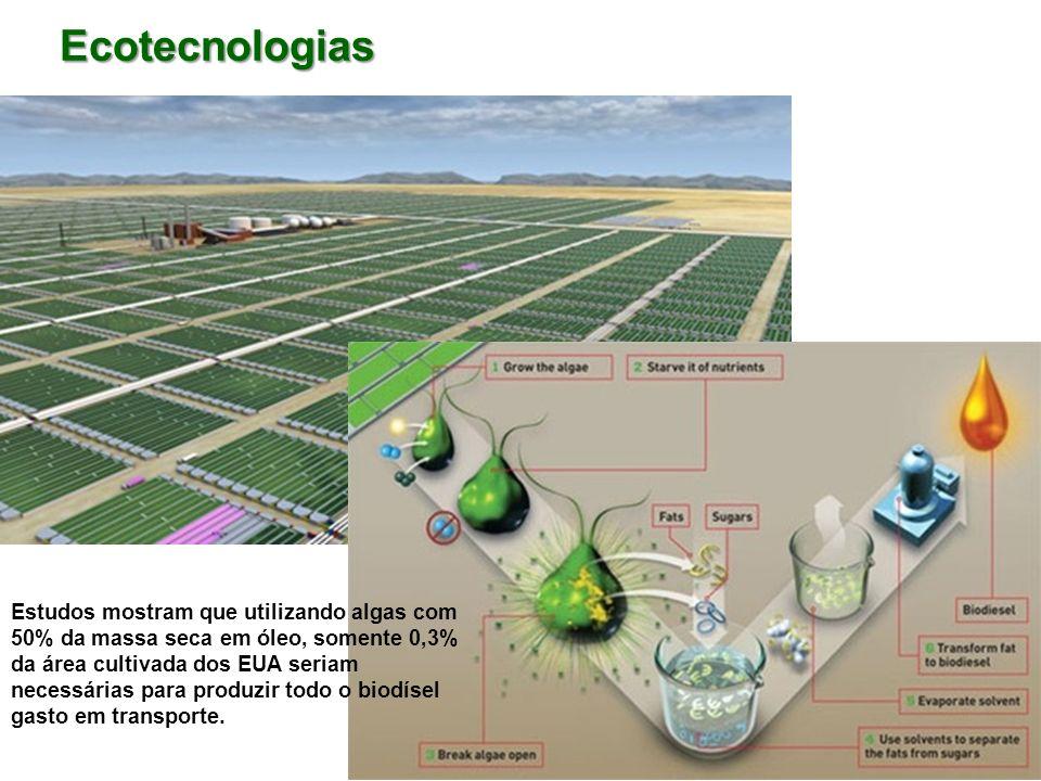 Ecotecnologias Estudos mostram que utilizando algas com 50% da massa seca em óleo, somente 0,3% da área cultivada dos EUA seriam necessárias para prod