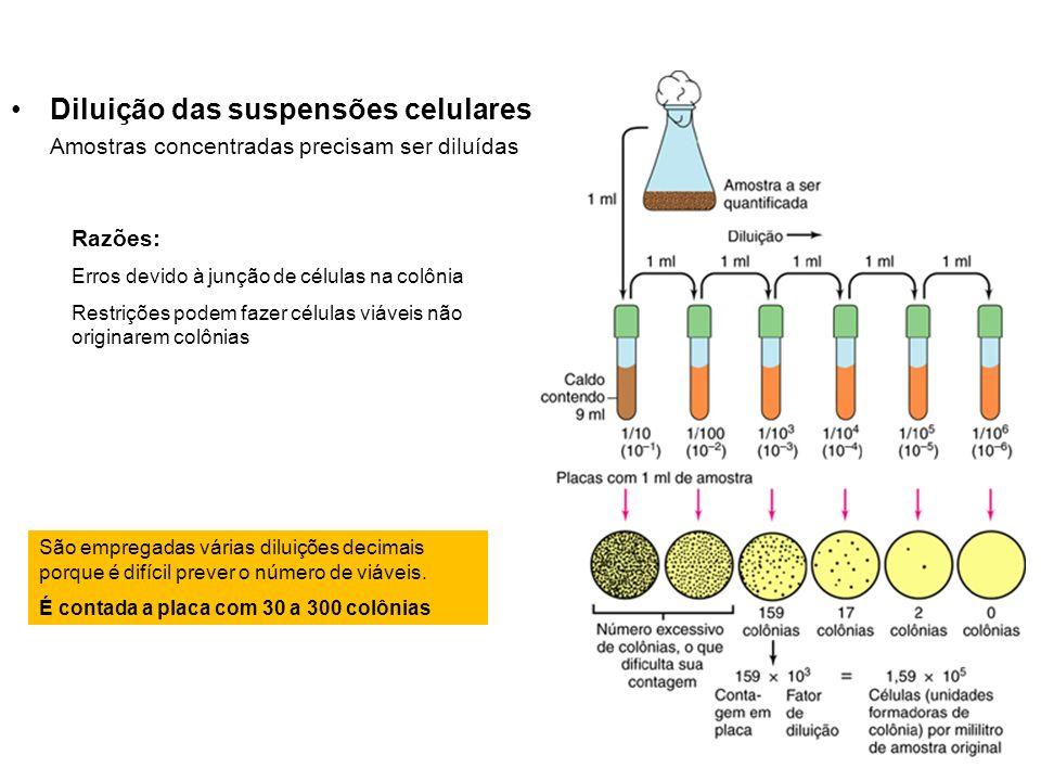 Razões: Erros devido à junção de células na colônia Restrições podem fazer células viáveis não originarem colônias São empregadas várias diluições dec