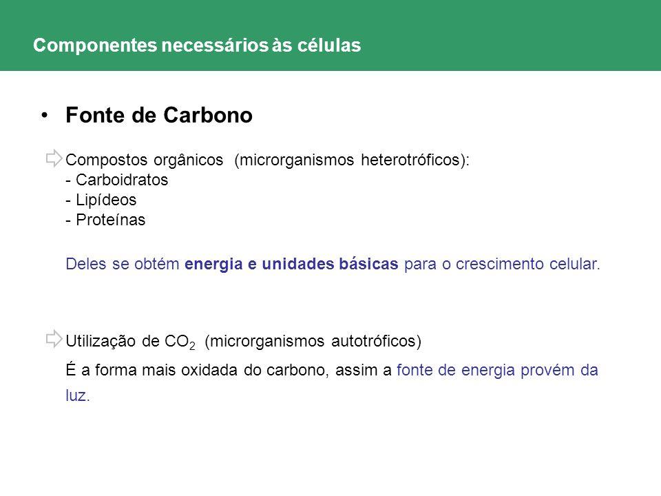 Componentes necessários às células Fonte de Carbono Compostos orgânicos (microrganismos heterotróficos): - Carboidratos - Lipídeos - Proteínas Deles s