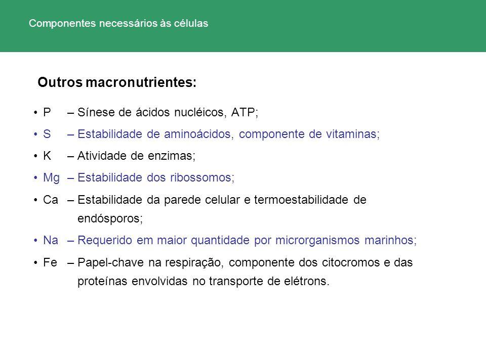 P – Sínese de ácidos nucléicos, ATP; S – Estabilidade de aminoácidos, componente de vitaminas; K – Atividade de enzimas; Mg– Estabilidade dos ribossom